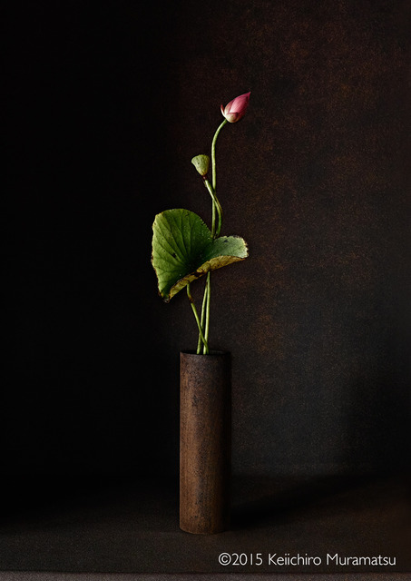 , 'A Stage Lotus 3-3,' 2015, Galerie Marie-Robin