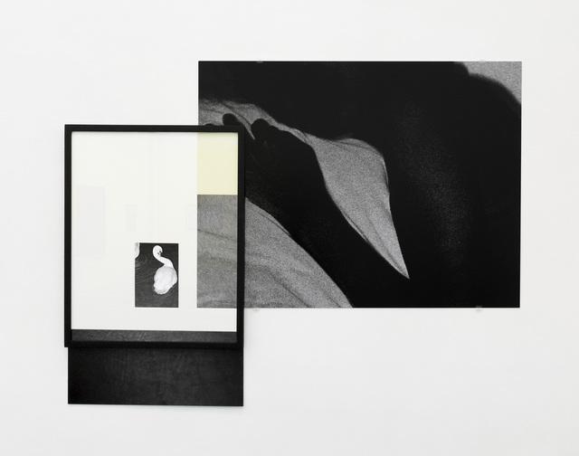 , 'Fragment #5,' 2014, Galerie Les filles du calvaire