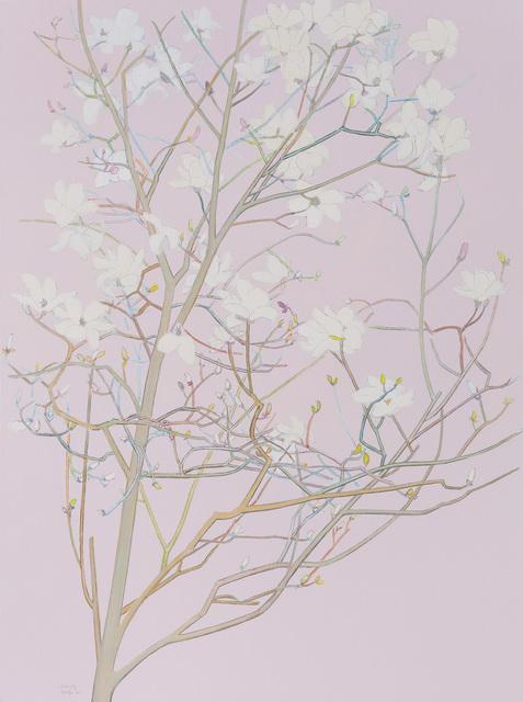 , 'Magnolia No.3,' 2015, Star Gallery