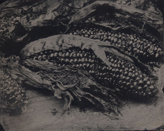 , 'Charred Corn,' 2007, Gallery NAGA