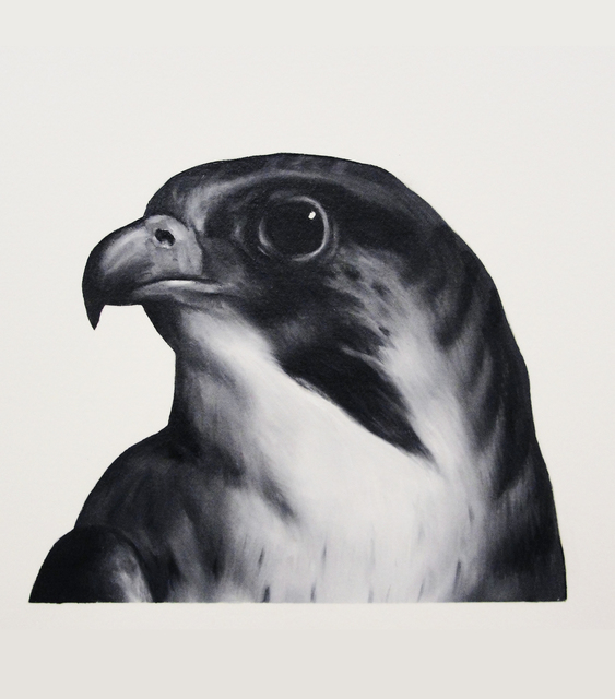 Shelley Reed, 'Falcon (after Landseer)', Painting, Visions West Contemporary