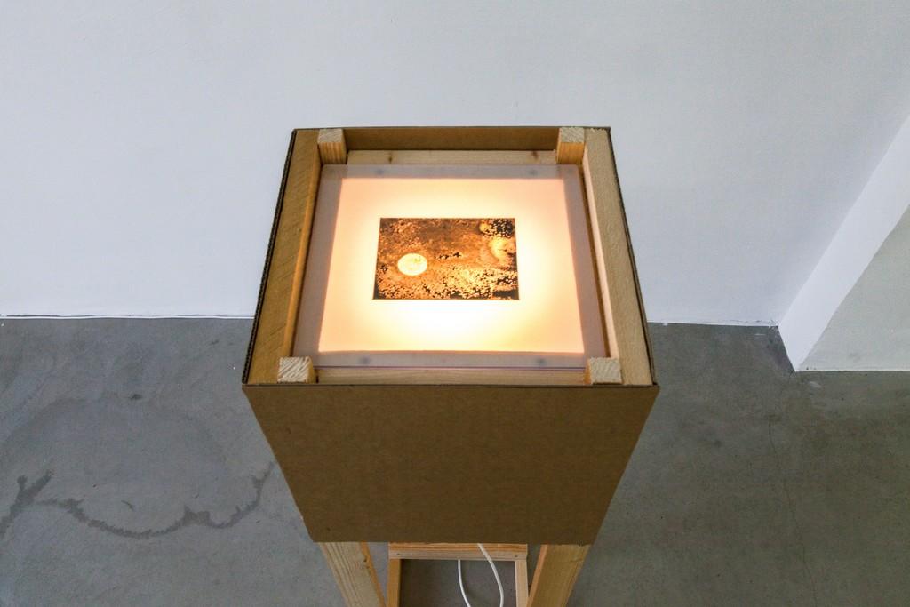 Karel Doing, salt treated negative, installation, 2013 | image: ©dasesszimmer