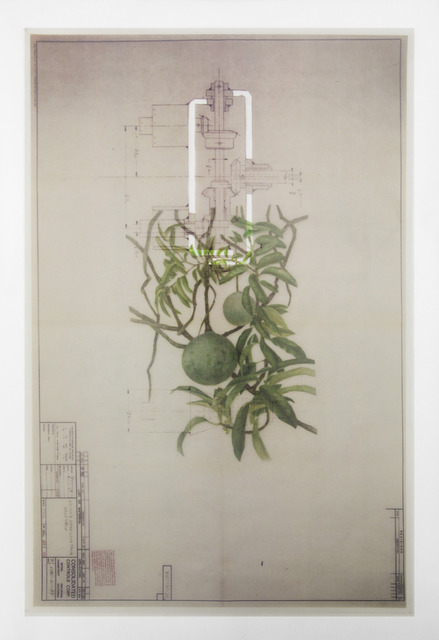 , 'Collage 9,' 2014, Galeria Nara Roesler