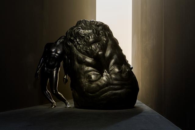 , 'Not enough brains to survive,' 2009, Museum Dhondt-Dhaenens