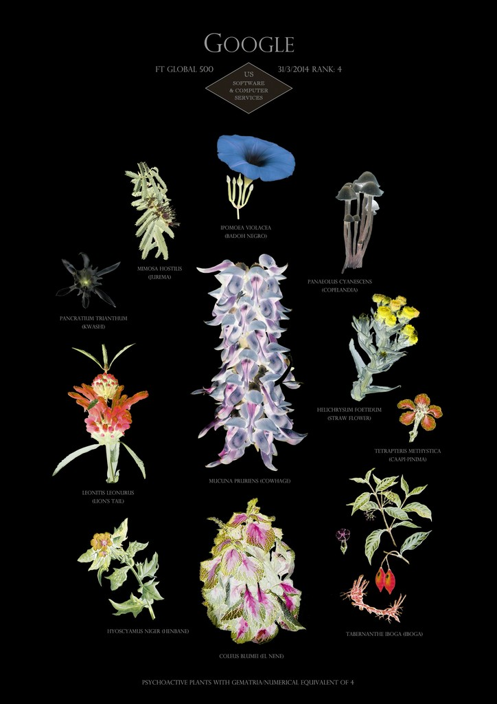 Image: Suzanne Treister, HFT The Gardener/Botanical Prints/Rank 4: Google - US - Software & computer services, 2014-15