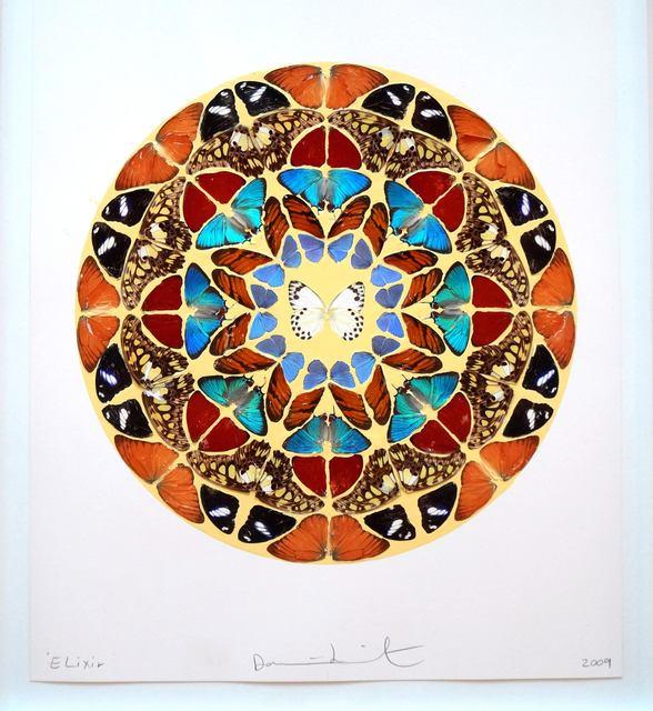 , 'Elixir,' 2009, Vivian Horan Fine Art