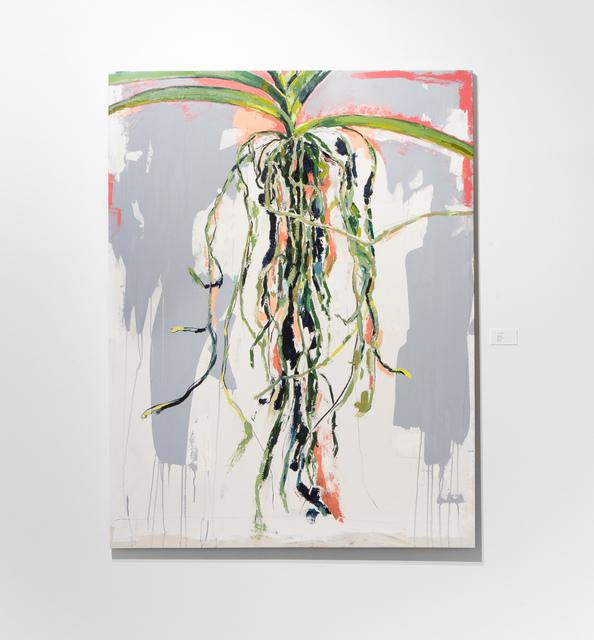 , 'Vanda,' , &gallery