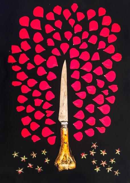 Portia Munson, 'Tree Knife Elbow', 2015, Print, Archival Digital Scan on Paper, Cross Contemporary Partners