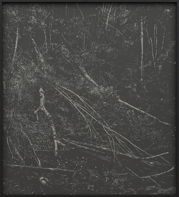 , 'Deep Chine -  Coldstream IV,' 2017, SMAC