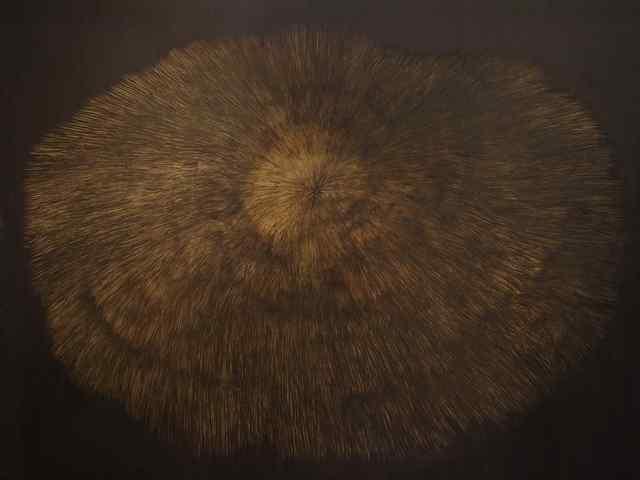 Rita Khachaturyan, 'Coral', 2018, Vanda Art Gallery