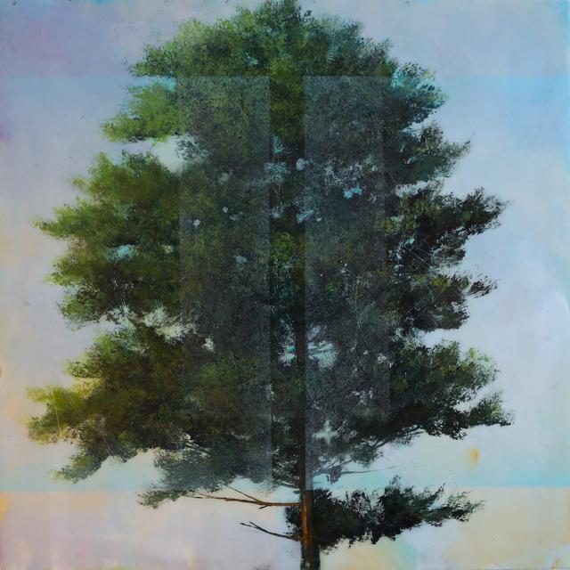 , 'Pine 2,' 2016, Newzones