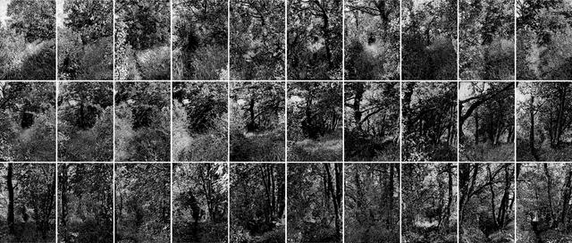 , 'Drawing the distance (North),' 2013, Galería La Caja Negra