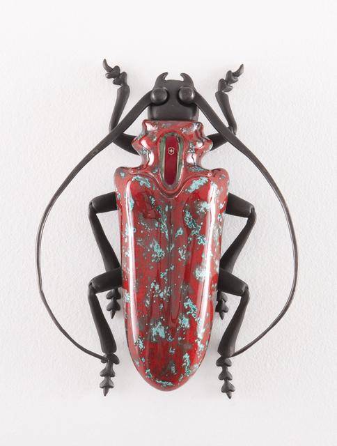 Matteo Pugliese, 'Cyclommatus Elveticus Ruber', 2012, Kwai Fung Hin