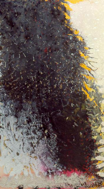 , 'Aplaitedsnonsglower,' 1993, SPONDER GALLERY