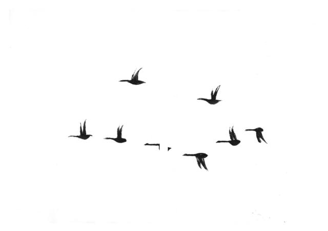 , 'Geese,' 2015, Susan Eley Fine Art