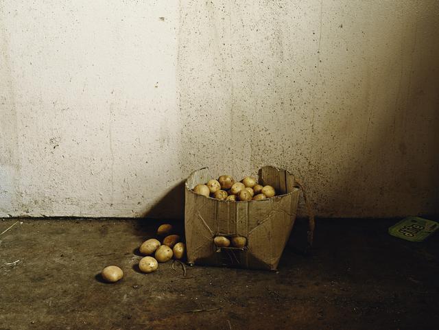 ", 'Inside the Besters' home, Vermaaklikheid, from the series ""Kin"",' 2013, PRISKA PASQUER"