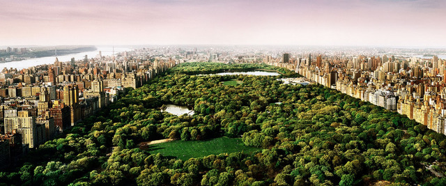 , 'Dreams of Central Park,' 2012, Oliver Cole Gallery
