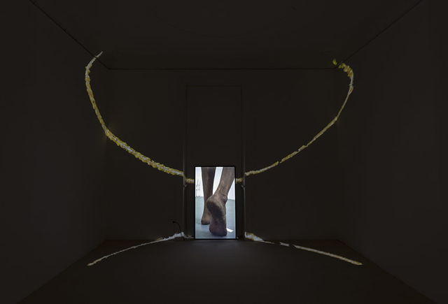 , 'Tamil Man,' 2018, Federica Schiavo Gallery