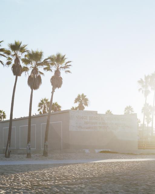 , 'Los Angeles Palms (Venice Beach),' 2017, Samuel Maenhoudt Gallery