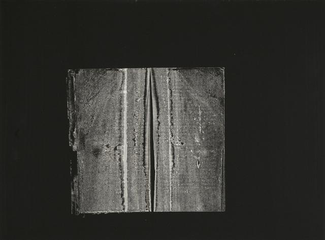 , 'Pnin,' 2015, Jenn Singer Gallery