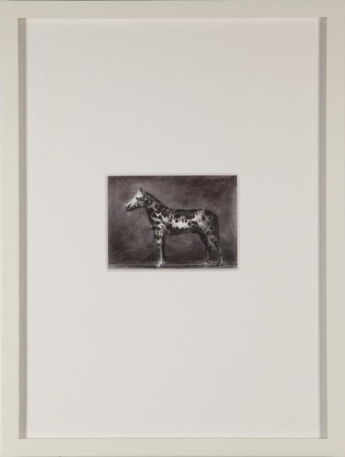 , 'Untitled (Testemunha),' 2011, Belo-Galsterer Galeria