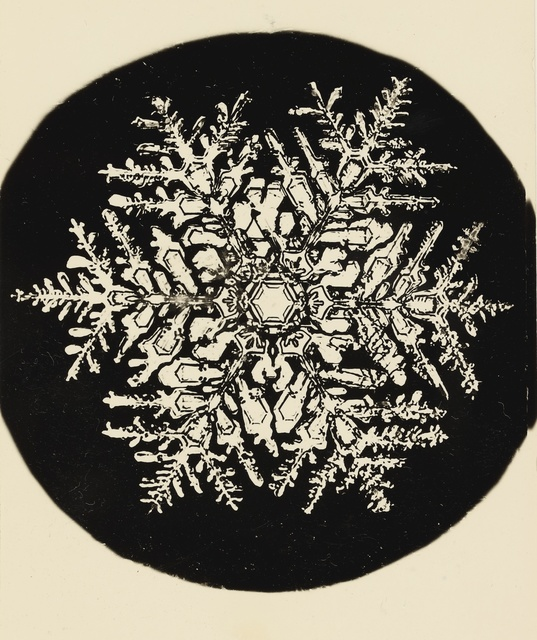 Wilson A. Bentley, 'Selected Images of Snowflakes', Sotheby's