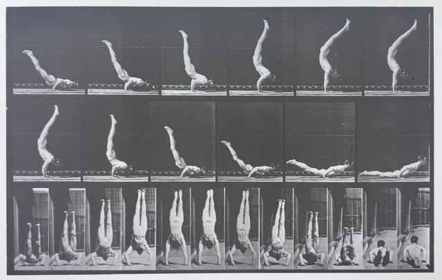 ", 'Plate 372. Acrobat, horizontal ""press up."",' 1887, Laurence Miller Gallery"