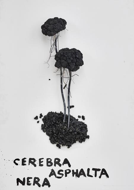 Kristof Kintera, 'Cerebra Asphalta Nera', 2018, Galerie Ron Mandos