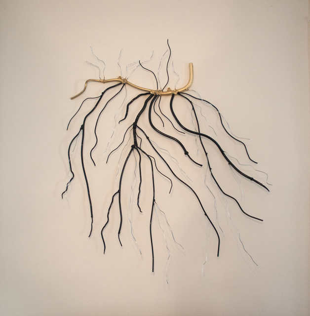 , 'Roots or Branches?,' 2015, Galleria Ca' d'Oro