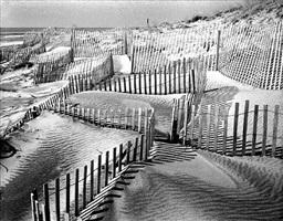 Daniel Jones, 'Beach Fence #1', Tulla Booth Gallery