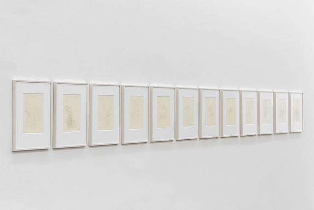 , 'Aufzeichnungen über einen Organismus I – XII,' , Galerie Hubert Winter