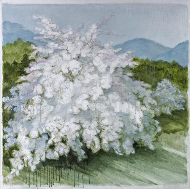 , 'Apple, June,' 2014, Pucker Gallery