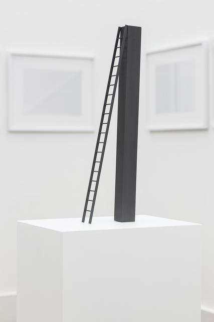 , 'Ladder,' 2013, Carroll / Fletcher