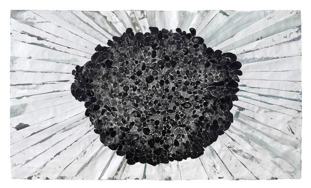 , 'Shallow Field Sluggo (black in a void),' 2014, Hiram Butler Gallery