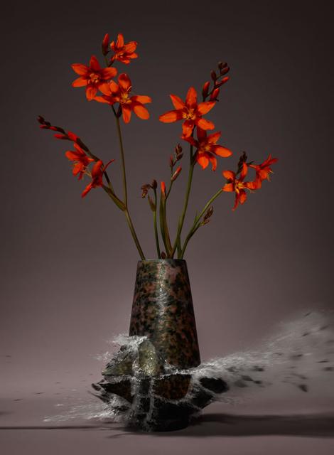 Martin Klimas, 'Crocosmia III', 2019, Foley Gallery
