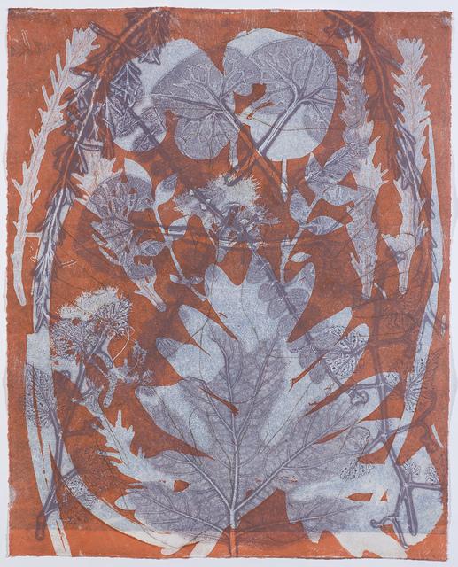 , 'Tara 36,' , InLiquid