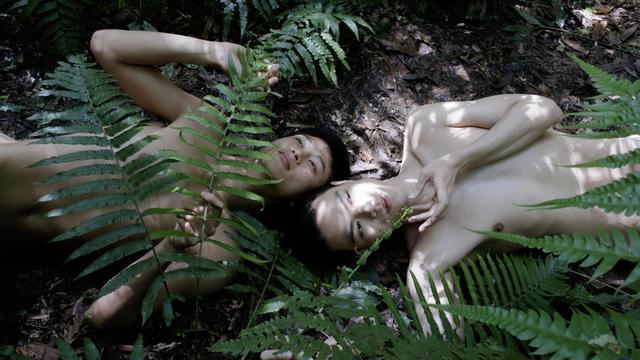 , 'Pteridophilia IV 蕨戀 IV,' 2019, Edouard Malingue Gallery