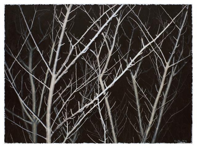 , 'Gray Tree,' 2016, Galerie Paris-Beijing