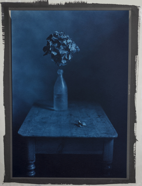 , 'Still Life 1126B,' 2004, Photography West Gallery