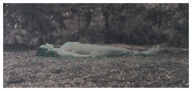 , 'Endosimbiosis, Bordado a mano y fotografía sobre lino, 240 x 110, 2016,' 2016, Isabel Croxatto Galería