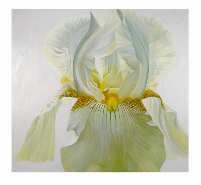 , 'Iris the Style Icon,' 2017, Piermarq