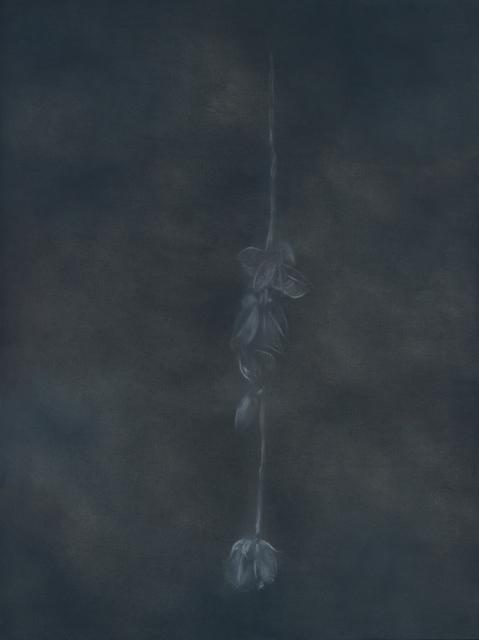 Miloš Todorović, 'Rose', 2020, Painting, Oil on canvas, Drina Gallery