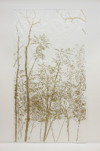 , 'Robinia 11,' 2009, Studio Guenzani