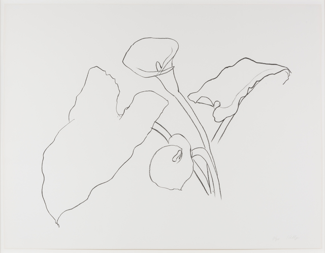 , 'Calla Lily I, From the Series of Plant and Flower Lithographs,' 1983-1986, Leslie Sacks Gallery