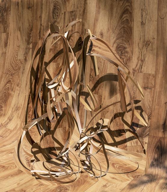 Nico Krijno, 'Veneer Wood Wood', 2014, Elizabeth Houston Gallery