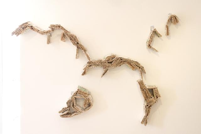 , 'Vorágine materia prima,' 2009, Baginski, Galeria/Projectos