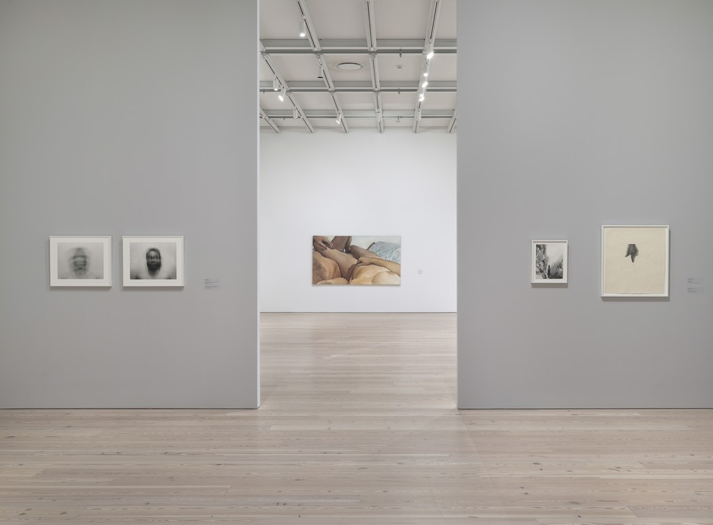 Installation view of Human Interest: Portraits from the Whitney's Collection (April 6, 2016-April 1, 2017, Whitney Museum of American Art, N.Y.). Photograph by Ron Amstutz. From left to right: Blythe Bohnen, Pivotal Motion From Chin, Large, 1974 (2003.11); Blythe Bohnen, Self Portrait-Horizontal Motion Bisected by Vertical Motion, 1974 (92.134.1); Joan Semmel, Touch, 1975 (P.2016.1); Robert Kinmont Self-Portrait as Plumb Bob, 1973 (2014.273); Liliana Porter, The Line, 1973 (2011.88). Photograph