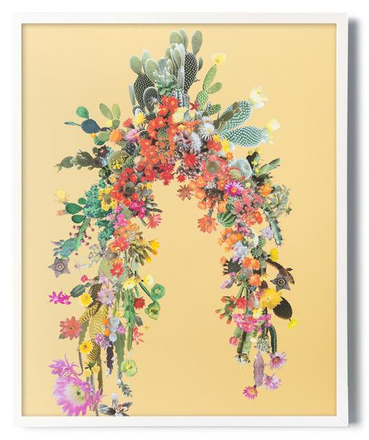 , 'Arc (Cacti & Succulents),' 2017, Carrie Secrist Gallery