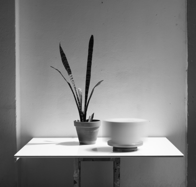 , 'Still Life (LIG) I,' 2016, Häusler Contemporary