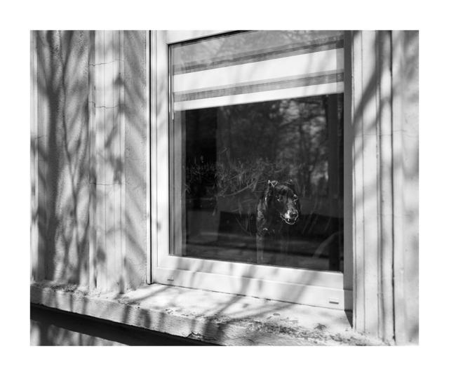 , 'Kleinstadt#73,' 2015-2018, Robert Morat